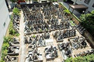 恵比寿台雲寺 樹木葬 永代供養墓の画像