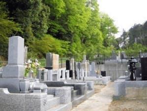 高幡不動尊金剛寺の画像