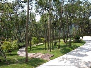 市原南霊園の画像