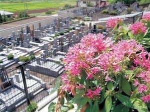 秋川観音墓苑の画像