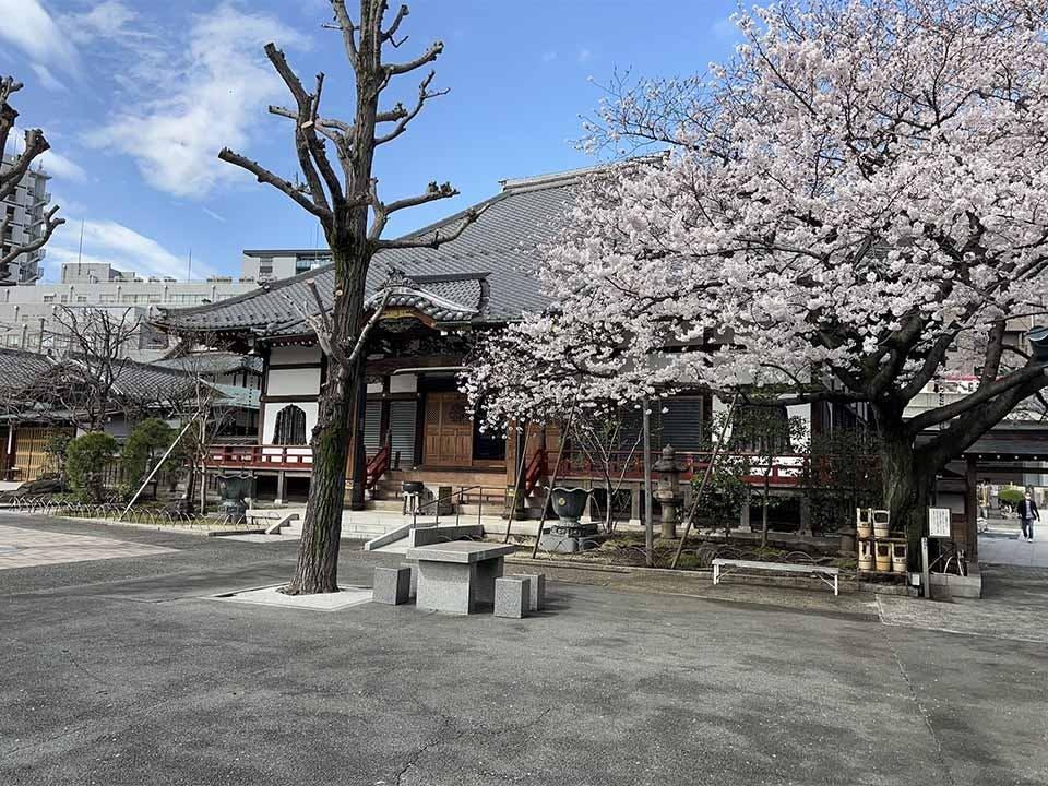 天妙国寺 永代供養納骨堂 鳳凰堂