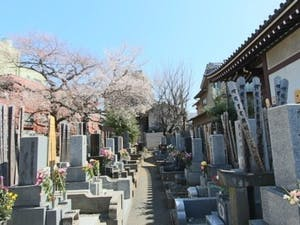 実相院墓苑の画像
