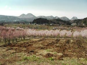 渋川北霊園の画像