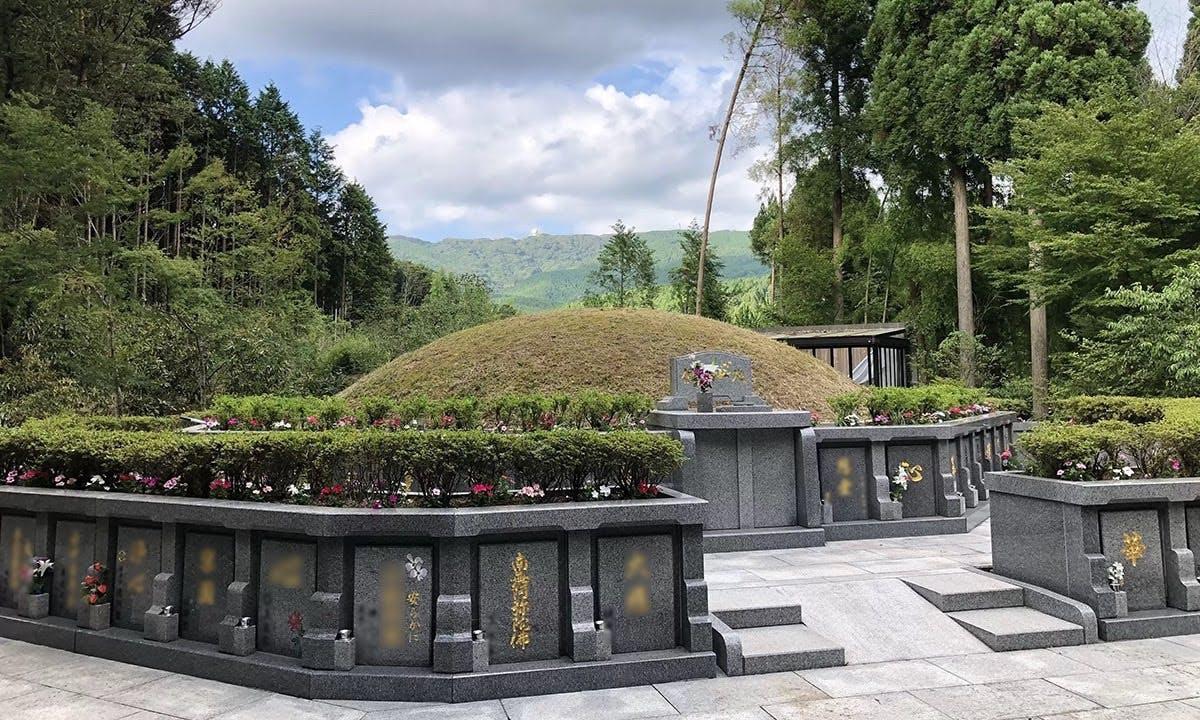 浄徳寺 シャクナゲ御廟