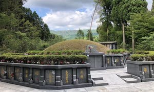 浄徳寺 シャクナゲ御廟の画像
