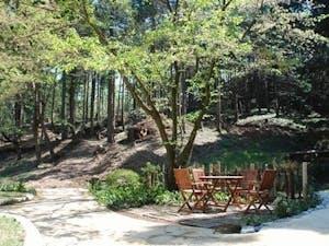 樹木葬墓地 こもれびの里の画像