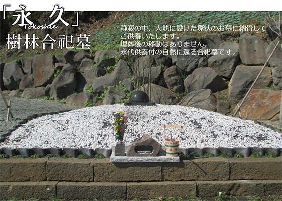 メモリアルヒルズ雲渓塚