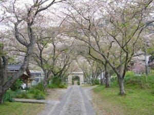 円応寺の画像