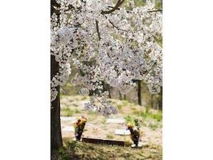 みちのく一関樹木葬かわさきの画像