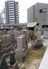 放出墓地の画像