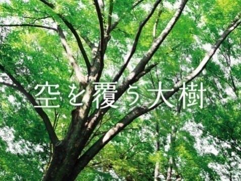 千年樹木葬