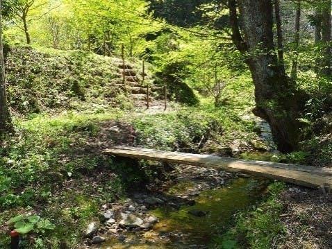 七ツ森樹木葬