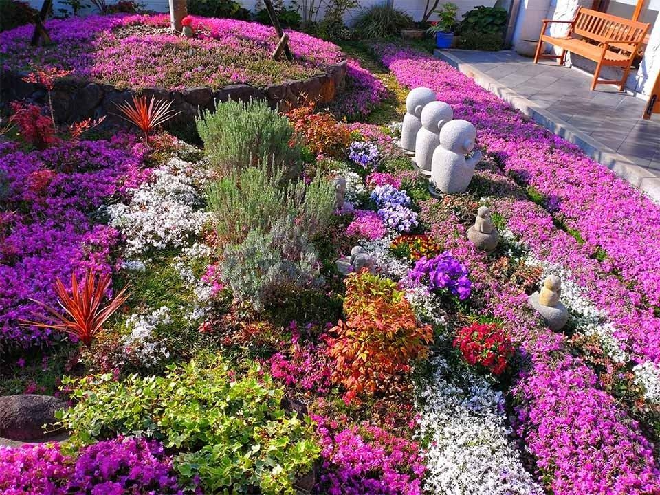速成寺 納骨堂・樹木葬