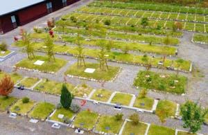 義仲メモリアルパーク(土に還る樹木葬)の画像