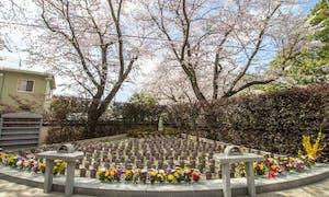 延命寺墓苑 永代供養墓・樹木葬の画像