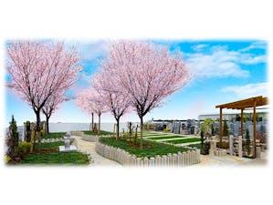 メモリアルパーク観音新町 永代供養 樹木葬「桜」 永代供養墓「祈り」 永代供養墓「旅立ち」の画像