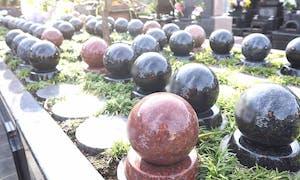 サニープレイス福寿園 樹木葬の画像