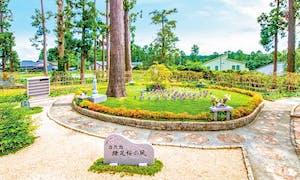 高倉観音・髙藏寺墓苑 永代供養墓・樹木葬の画像