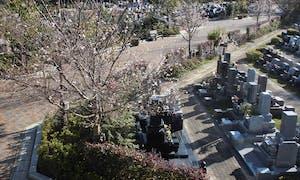 森のお墓 弥生の里・自然聖園の画像