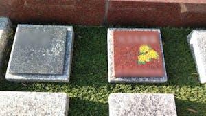 広沢墓苑(一般墓・樹木葬)の画像
