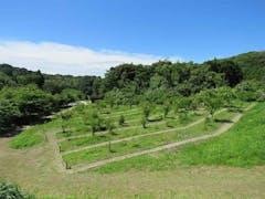 森の墓苑の画像