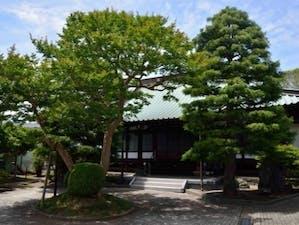 妙隆寺墓苑の画像