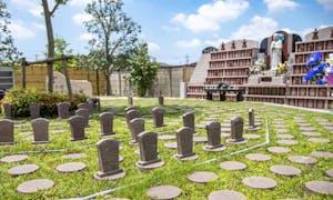 円光院・やすらぎの杜 永代供養墓・樹木葬の画像