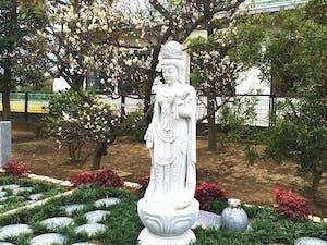 八潮樹木葬墓地の画像