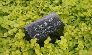 新宿の樹木葬 牛込庭苑の画像