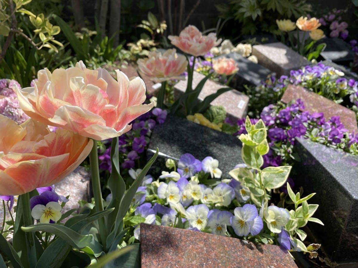 樹木葬 上京庭苑みのり