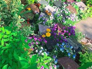 樹木葬 上京庭苑みのりの画像