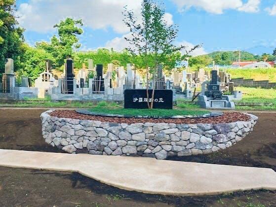 能満寺墓苑 樹木葬「沙羅双樹の丘」