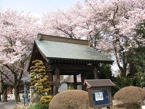 下野大師華蔵寺の画像