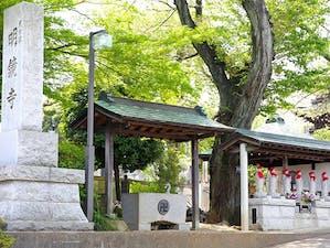 溝の口樹木葬墓地の画像