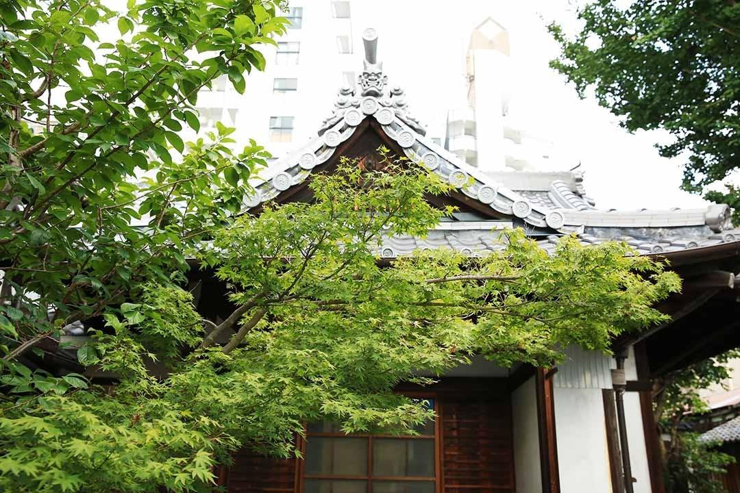 五条大宮樹木葬墓地