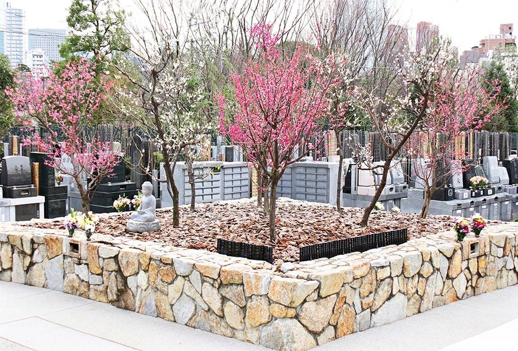 梅窓院 永代供養墓・樹木葬