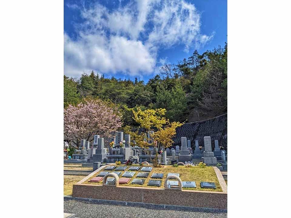 丸子山樹木葬墓地