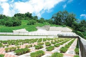 二宮霊園 ひかりの丘の画像