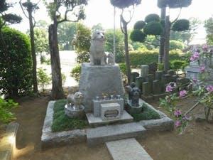 吉祥院 墓苑の画像
