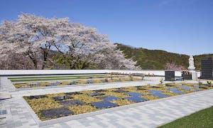 花の寺 宝積寺「宝桜の庭」樹木葬の画像