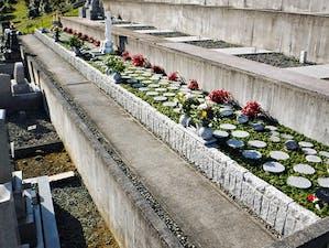 葵北沼上樹木葬墓地の画像