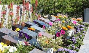 ガーデニング樹木葬霊園 空の庭苑の画像