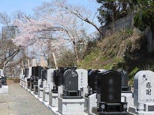 大満寺の画像
