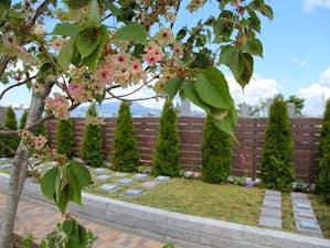 樹木葬霊園「花もみじ中野」の画像