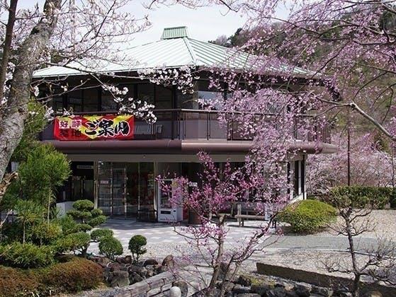 京都霊園 樹木葬