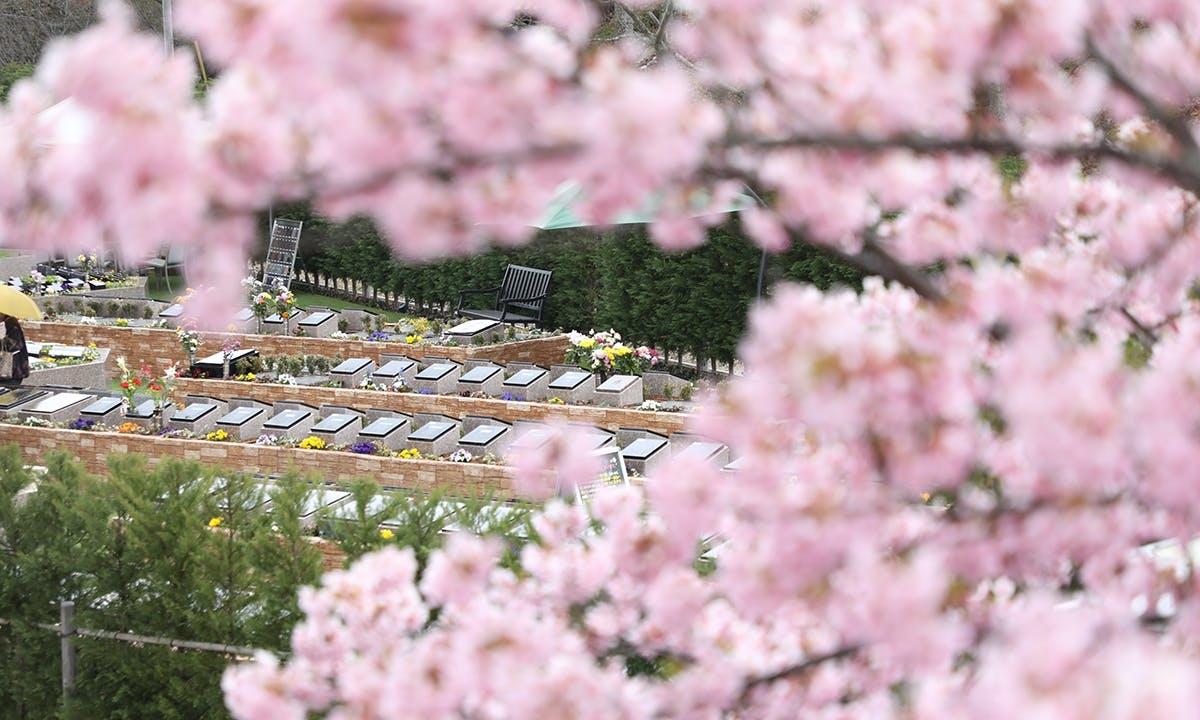 ガーデニング・樹木葬霊園 やいづさくら浄苑