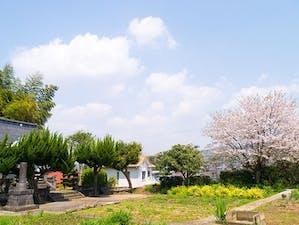 金井寺 のうこつぼの画像