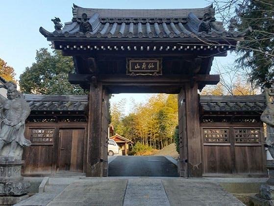 正林寺 のうこつぼ