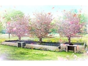 鹿沼樹木葬『清陵苑』の画像