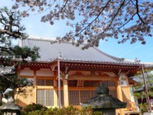向旭山 西念寺